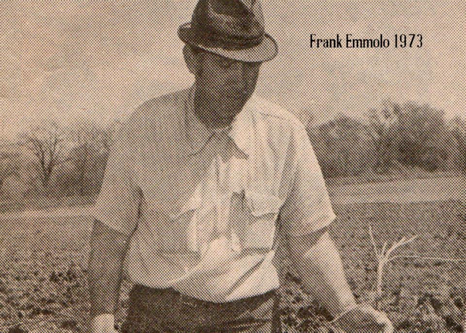 Frank Emmolo 1973